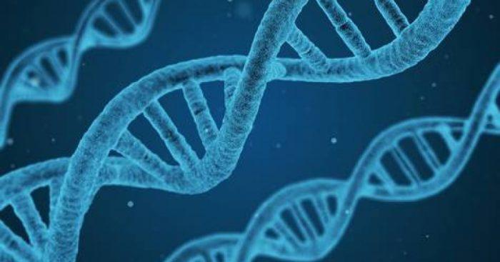"""Científico español preocupado por modificación genética con fines """"incorrectos"""""""