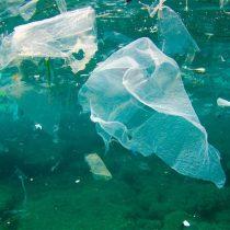 Bolsas plásticas: prohibir por el bien común