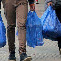 Asociación de Industriales del Plástico advierte consecuencias y acude al TC para frenar prohibición de bolsas