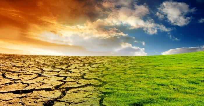 Contaminación del aire cuesta al mundo US$8.000 millones al día