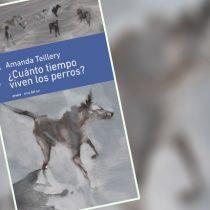 Libro ¿Cuánto tiempo viven los perros?: los traumas negados y soledades disfrazadas