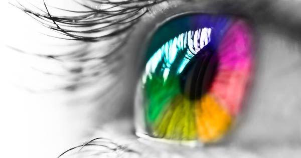 SeeColors: la app que apoya a personas con daltonismo