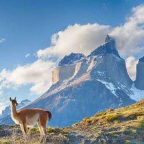 Imagen de Chile: dignidad, libertad y luminosidad