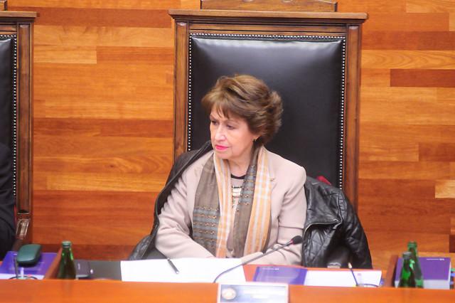 Marisol Peña: aunque en el TC