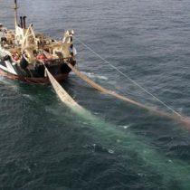 Estudio científico revela que la mayoría de la pesca en alta mar no sería rentable sin subsidios gubernamentales