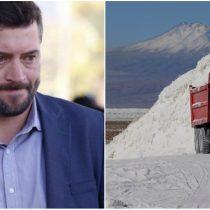 El zapato chino de Sichel: Comisión de Minería pone foco en conflictos de intereses con SQM