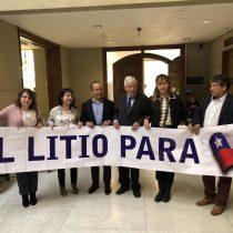 Bancada de diputados del PPD y el PRO piden expropiar SQM, nacionalizar el litio y crear empresa estatal