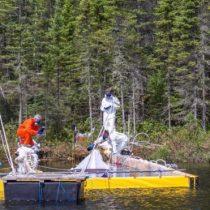 La razón por la que realizaron un vertido de petróleo deliberado en un lago de Canadá
