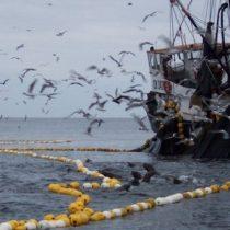 La pesca ilegal en aguas nacionales: un atentado flagrante contra la biodiversidad