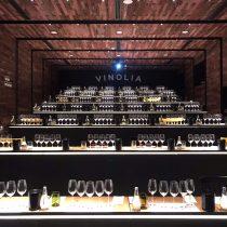 Vinolia: vivir la experiencia de visitar una viña sin salir de Santiago
