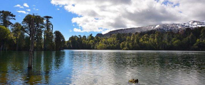 Parques Nacionales: tiempos mejores para los privados