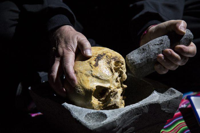 """""""La lección de pintura"""", el documental sobre la emblemática obra de huesos humanos pintados de Arturo Duclós"""