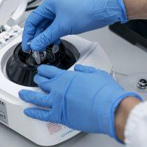 Los banqueros de inversión en Hong Kong atrapan la fiebre biotecnología