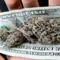 Algo más verde que el dinero agita los mercados mundiales: la inversión en marihuana en países donde es legal