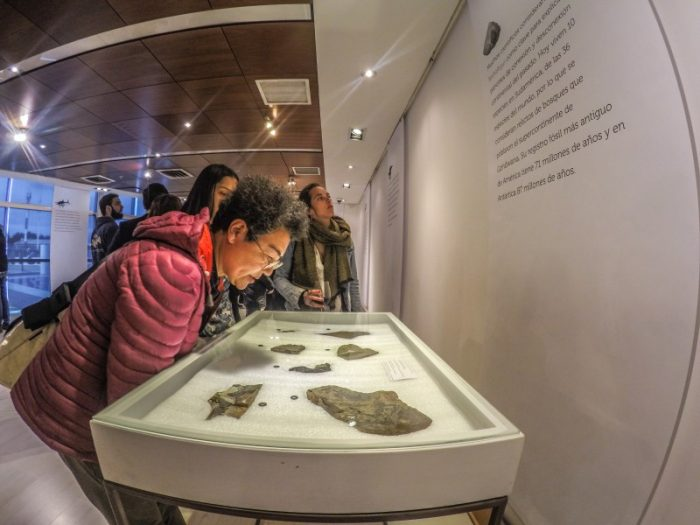 """""""Patagonia Fósil"""": exitoso proyecto paleontológico busca potenciar el turismo científico"""