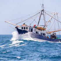 Nueva red fiscalizadora busca mayor coordinación para revisar la actividad pesquera