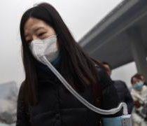 El dañino factor ambiental que puede afectar nuestra inteligencia