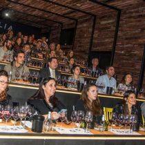 Vinolia celebra su primer año con nuevos exponentes del Valle de Colchagua