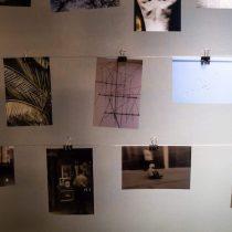 Pasando & Pasando: iniciativa invita a intercambiar fotografías de forma gratuita