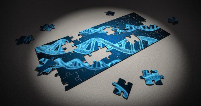 Estudio científico revela que los genes del padre pueden tener impacto en el cuidado materno