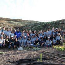 Voluntarios de todo el país plantan árboles nativos en zonas afectadas por incendios