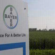 Bayer tranquiliza a inversores sobre Monsanto y apoyo a Roundup