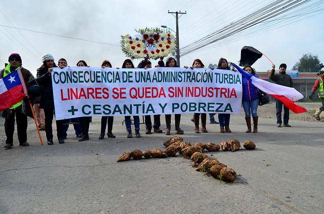 Comienzan los despidos: Iansa desvincula a 51 trabajadores estables y 226 de temporada por cierre de planta en Linares