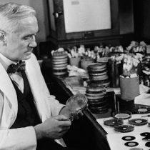 90 años tras la penicilina: artilisinas, la alternativa a los antibióticos