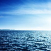 """Apoyo de Chile a protección del 30% de los océanos: """"Es un paso mínimo para detener la crisis que viven los mares del planeta"""""""