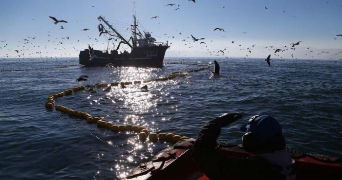 A propósito del fallo de La Haya ¿en realidad nuestro mar y sus recursos son de todos los chilenos?