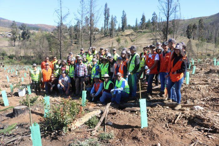 Inician proyecto de reforestación en Cerro La Carmiña de Santa Olga