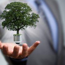 Responsabilidad con el medio ambiente y riesgo ambiental