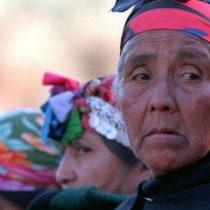 Red de Mujeres Mapuche critica actuar de las autoridades contra las hortaliceras del Wallmapu