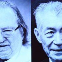 Nobel de Medicina: los inmunólogos James P. Allison y Tasuku Honjo ganan el premio por descubrir cómo usar nuestras propias células para combatir el cáncer
