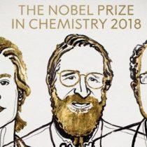 Nobel de Química por avances en desarrollo proteínas basados en cambios genéticos y selección