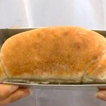 Cómo un pan hecho con cucarachas tiene más proteína que la carne roja (y cómo eso puede solucionar un problema global)