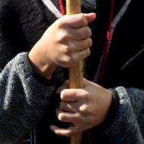Justicia restituyó tierras del Grupo Angelini a comunidad mapuche