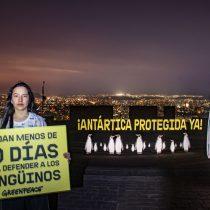 Pingüinos virtuales se toman el Parque Metropolitano