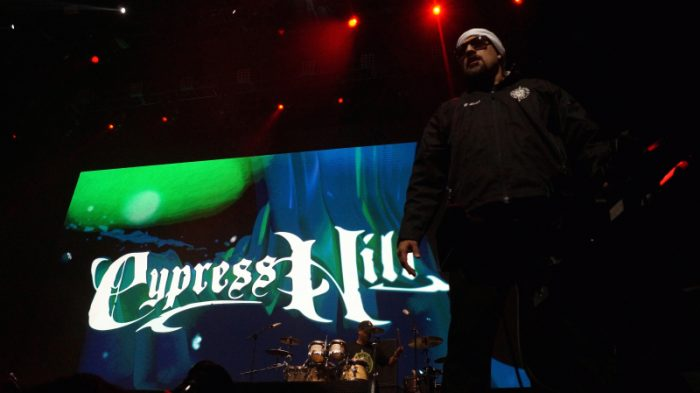 Molotov y Cypress Hill cierran el exitoso primer Cosquín Rock en Chile