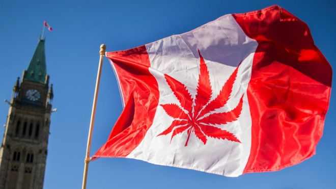 Cannabis legal en Canadá: colas y escasez en los primeros días de venta y de consumo legal de marihuana
