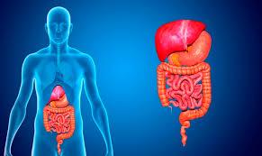 Data Science ayudaría a predecir cánceres digestivos