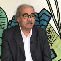 Carlos Flores, director de Fidocs: