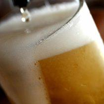Científicos chilenos trabajan en la creación de la primera cerveza con identidad nacional