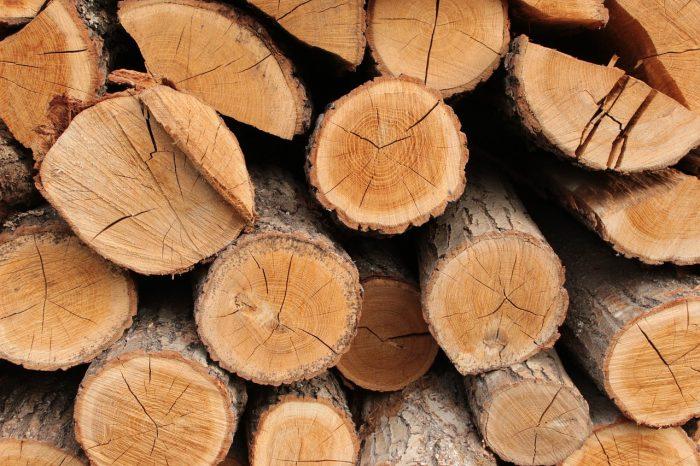 Deudas con nuestra madera y medio ambiente