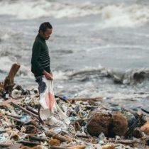 Alerta por consumo de pescados y mariscos tras detección de microplásticos en heces humanas