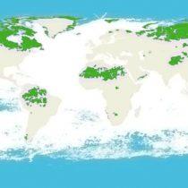 Los 5 países que concentran el 70% de los ecosistemas intactos del mundo