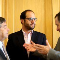 Canciller pidió coherencia a Francia por caso Palma Salamanca: