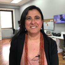 Miradas: Las deudas en el campo de las ciencias y la innovación que hacen de Chile un mercado inmaduro