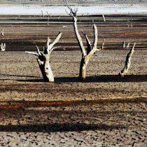 Nivel crítico de aguas subterráneas en Coquimbo no sería por causas naturales