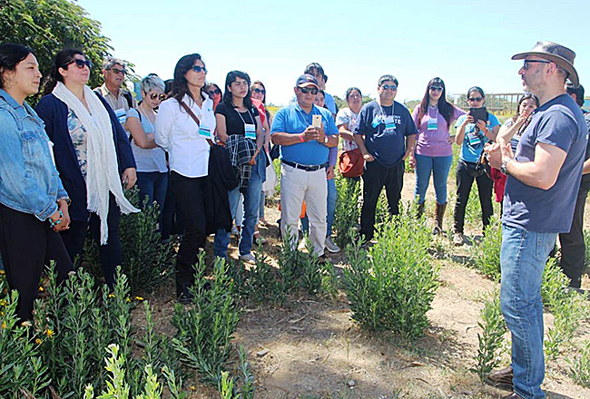 Enap realizó seminario internacional de humedales en Concón